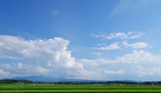 【厳選20作品】夏に読みたい本・小説のおすすめ20選①