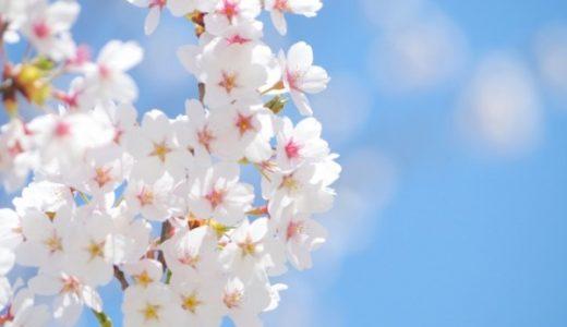 【春の小説】春に読みたいおすすめ本/小説20選